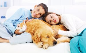 Smiling children embracing sleeping dog and cat